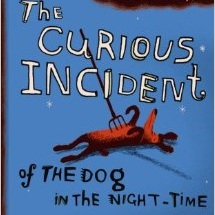 curious-incident-of-the-dog-in-the-night-time