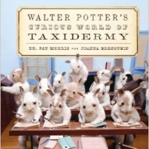 walter-potters-curious-world-of-taxidermy