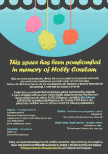 [Image Description: Informational poster about Holly's PomBoms]
