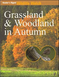 [Image Description: Book cover for Grassland And Woodland In Autumn. Photograph of an autumnal wood with orange, yellow, and green leaves.]