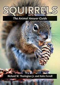 [Image Description: Book cover for Squirrels: The Animal Answer Guide. Photograph of a squirrel holding a pinecone.]